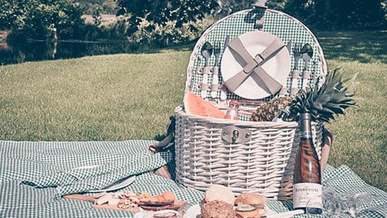 Picknick Kasteel Maurick